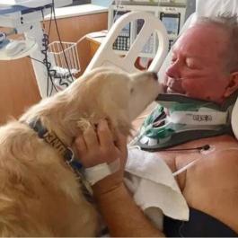 Immobilisé dans la neige pendant 24 heures, son chien lui sauve la vie