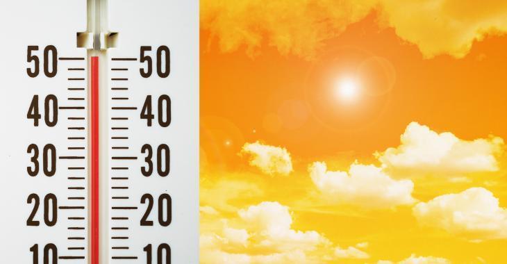 Des écoles permettront les absences en raison de la chaleur accablante