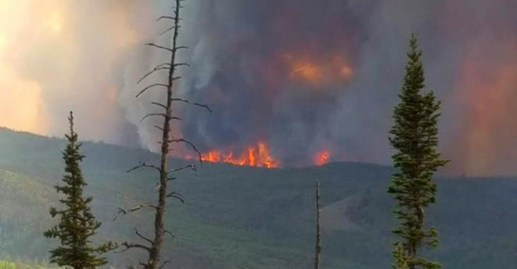 Canicule | 18 feux de forêts font rage
