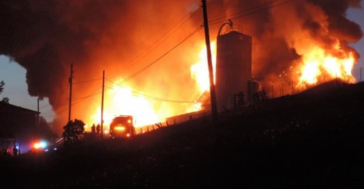 250 vaches périssent dans un violent incendie