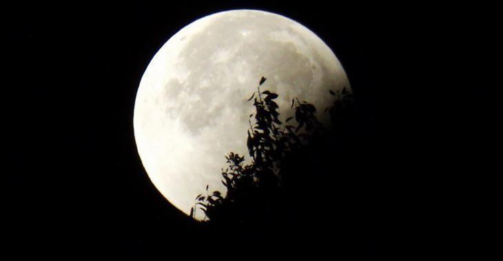Le meilleur moment pour observer la «Super Lune»!
