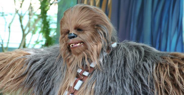 Chewbacca vous souhaite un Joyeux Noël!