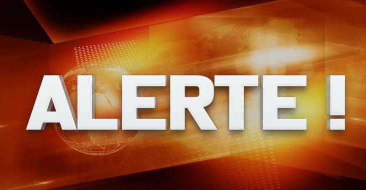 ALERTE AMBER: La police d'Ottawa lance une alerte pour retrouver un garçon de 4 ans