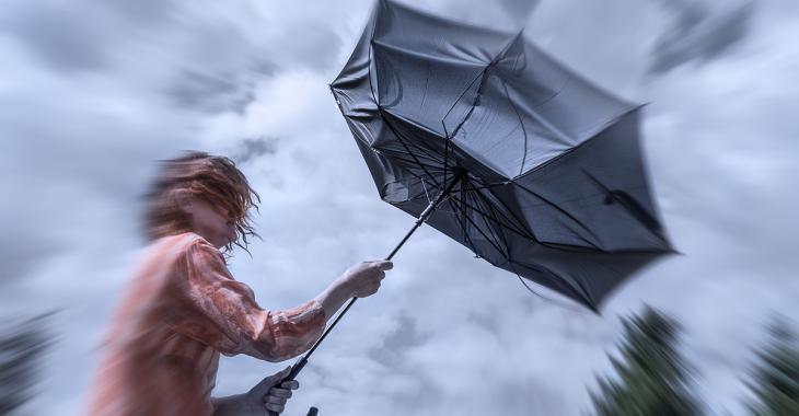 Le Québec devrait recevoir les restes de l'ouragan Isaias la semaine prochaine