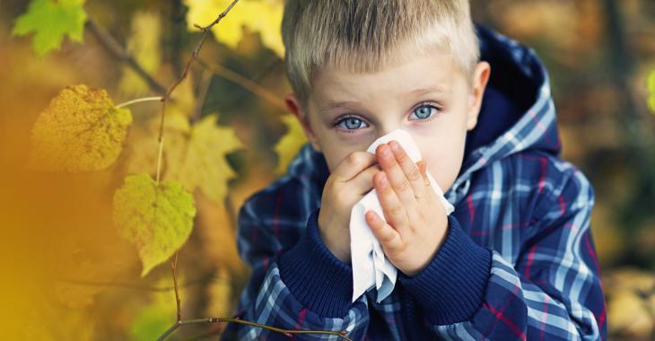 Que feront les écoles et les garderies avec les enfants qui ont le nez qui coule?