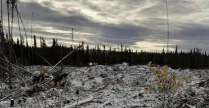 Des premiers flocons de neige sont apparus sur le sol des monts Valin.