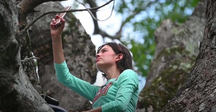 Deux soeurs suivent leurs cours en ligne du haut d'un arbre pour avoir un signal internet